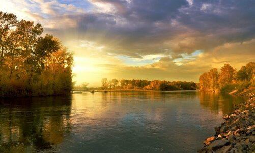 Białowieski Park Narodowy – prawdziwa perełka natury
